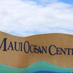Wind Turbines Removed at Maui Ocean Center