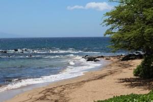 Ulua Beach in Wailea, 7/31/13. Photo by Wendy Osher.