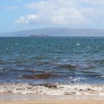 Ulua Beach in Wailea, 7/31/13. Photo by Wendy Osher.