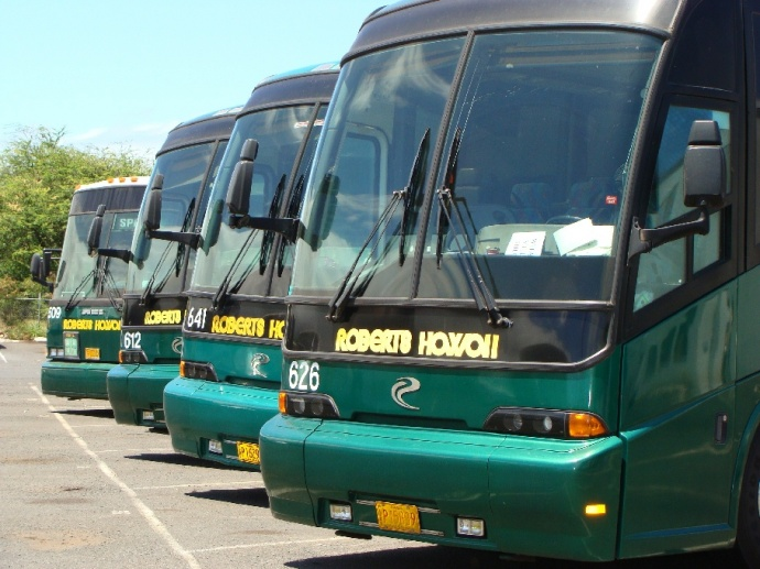 Roberts Hawaiʻi bus, photo by Wendy Osher.