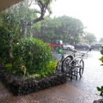 Flossie impacts in Lahaina. Photo courtesy Susan Figg.