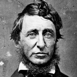 Henry David Thoreau urges you to try a little harder.