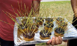 Donuts as sea urchins. Photo courtesy Maui Ocean Bloggers.