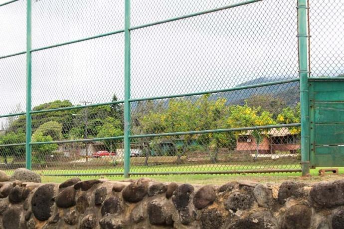 Waiheʻe Ball Park, photo by Wendy Osher.