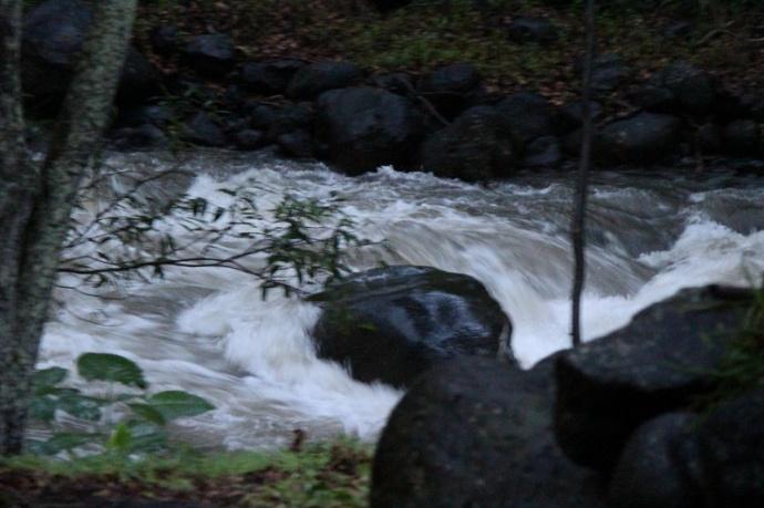 ʻĪao River, photo by Wendy Osher.