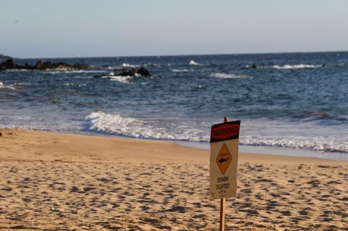 Palauea Beach Also Known As White Rock In Mākena 8 14