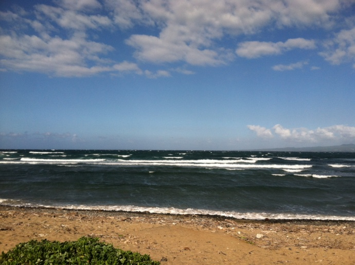 Windy conditions in Waiehu but there are some small waves. Photo: Carlos Rock.
