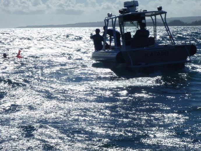DLNR Fisheries Enforcement Inspecting spearfishermen. Courtesy photo.