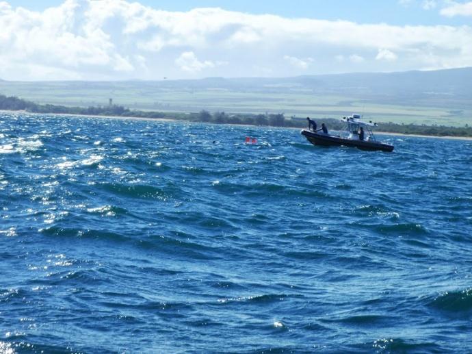 DLNR Fisheries Enforcement Spearfisherman inspection.  Photo courtesy DLNR.