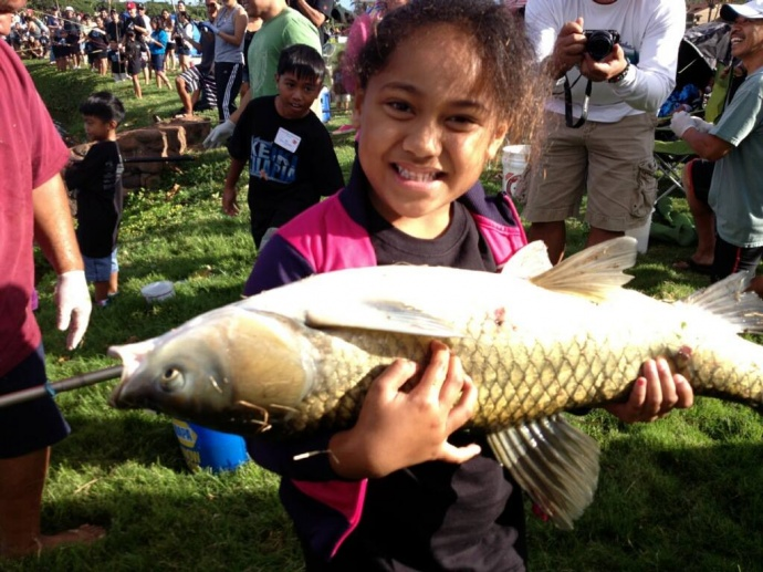 Makanani Kahaialii reeled in this huge carp during the MECO 2013 Keiki Tilapia Fishing Tournament.  It was too big to weigh on the tournament scales and was returned to the pond.  Makanani took home the first place prize for biggest non-tilapia fish, and possibly the biggest fish ever caught in the tornament.  Kahaialii 'ohana photo.