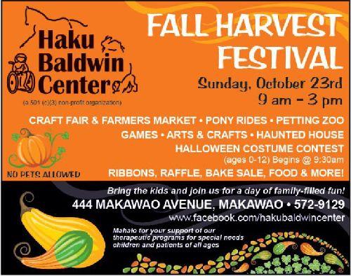 Haiku-Baldwin-Center-Fall-Festival-2011-500-1