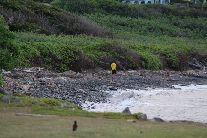 DLNR officers patrol Waiehu coastline following apparent shark bite incident.