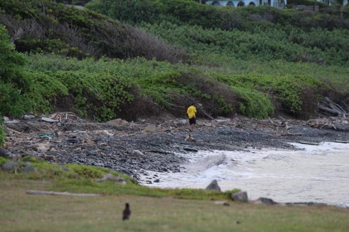 DLNR officers patrol Waiehu coastline following apparent shark bite incident.
