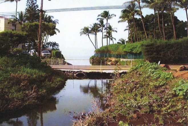 Waiakoa Culvert view of upstream headwall and inlet. Image courtesy FEA filed by Munekiyo & Hiraga, Inc., prepared for the County of Maui, Department of Public Works.