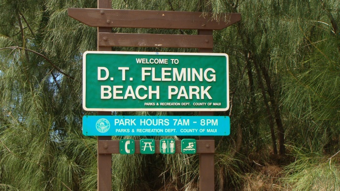 DT Fleming, photo by Wendy Osher.