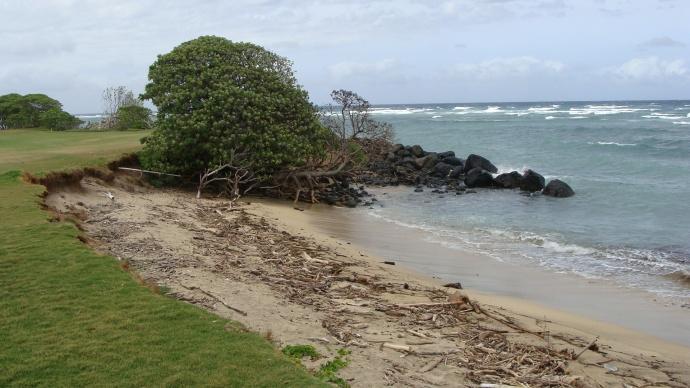 Waiheʻe, Maui. File photo by Wendy Osher.