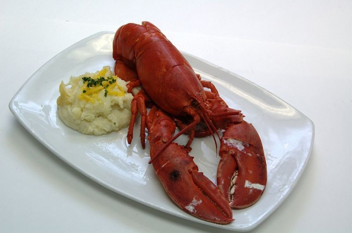 If you've never seen one, this a lobster (post boiling pot of water). Image courtesy Wikipedia