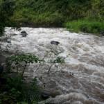 Wiluku River at ʻĪao. Maui Now photo.