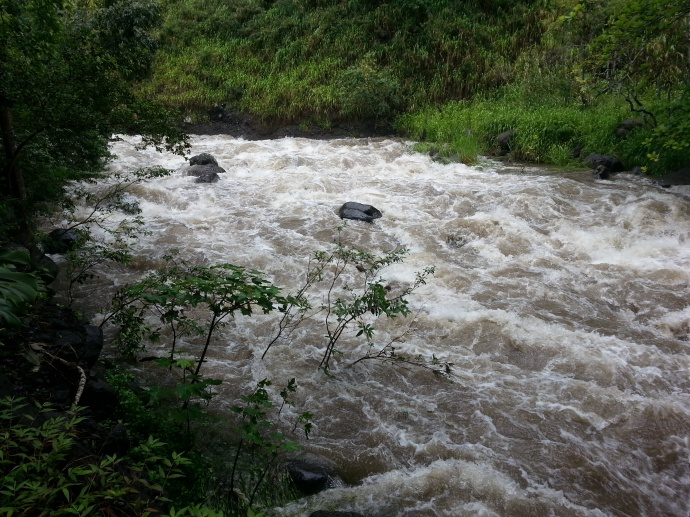 Wailuku River at ʻĪao. Maui Now photo.