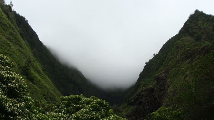 ʻĪao at Black Gorge. Photo by Wendy Osher.