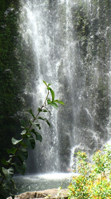 Wailua waterfall at Honolewa Stream in East Maui. File photo by Wendy Osher.