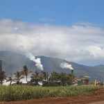 Projected site of the Target Maui location at the intersection of the Mokulele Highway and Hookele Street. The Puunene Sugar Mill can be seen in the background.  Photo by Wendy Osher.