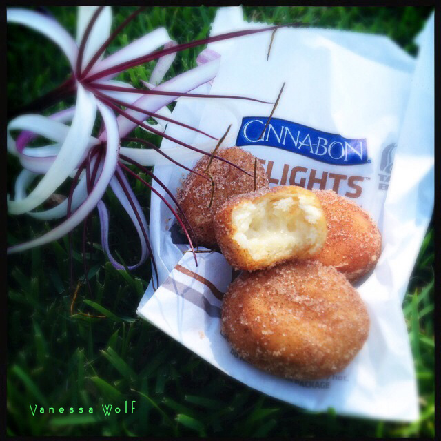 The Cinnabon Delights. Quit yet whining and embrace your upcoming pulmonary embolism. Photo by Vanessa Wolf