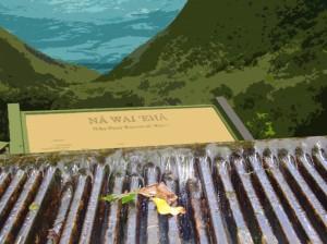 Nā Wai ʻEhā, graphics/montage by Wendy Osher.