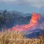 Fire located along the Piʻilani Hwy in South Maui, April 16, 2014.  Photo courtesy David Schoonover.