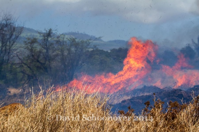 Fire located along the Piʻilani Hwy in South Maui, April 16, 2014. Photo courtesy David Schoonover.