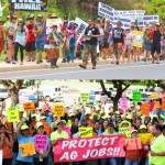 TOP PHOTO: More than 1,000 marchers participated in an Anti-GMO event on Sunday, March 30, 2014. Photo by Rodney S. Yap. BOTTOM PHOTO: Monsanto rally, April 3, 2014, Wailuku, Maui. Courtesy Photo.