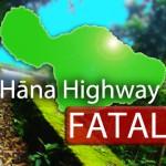Hāna Highway fatal. Maui Now image.