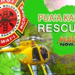 Rescue, Maui Now graphic.