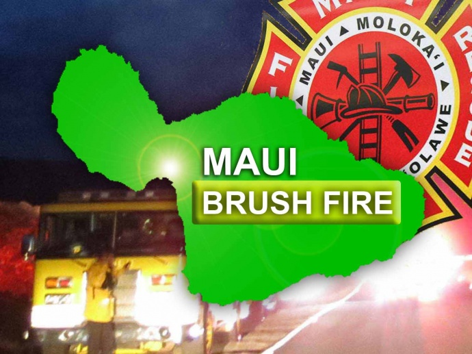 Maui Now graphic.