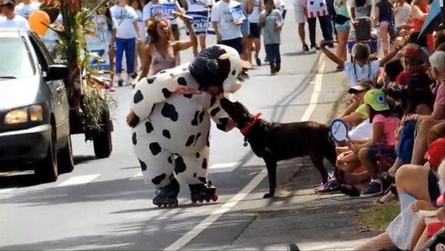 Makawao 4th of July Parade and Rodeo. Courtesy photo.