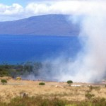 Lahaina brush fire. Photo by G. Bergson.