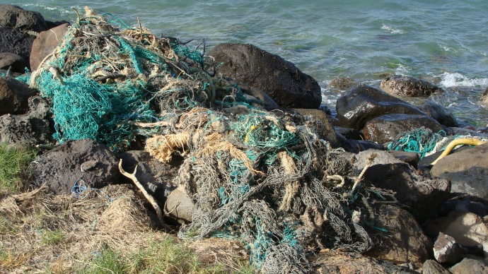 Netting found washed up onshore at Waiehu Beach. 2012 file photo by Wendy Osher.
