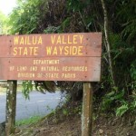 Wailua, file photo by Wendy Osher.