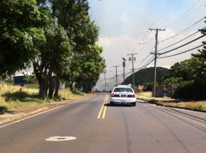 Baldwin Avenue brush fire, 9/3/14. Photo by Tara Dugan.