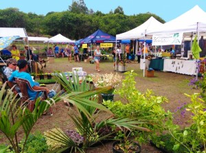 Upcountry Maui is the site of a trio of holiday-season Keokea Homestead Open Market events featuring fresh produce, crafts, food and entertainment. Photo courtesy: Department of Hawaiian Home Lands .