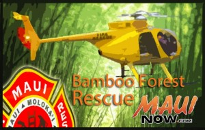 Bamboo Forest Rescue. Maui Now graphic.