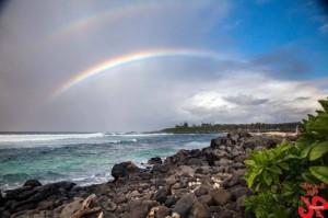 Ho'okipa Rainbow / Image: Jimmie Hepp