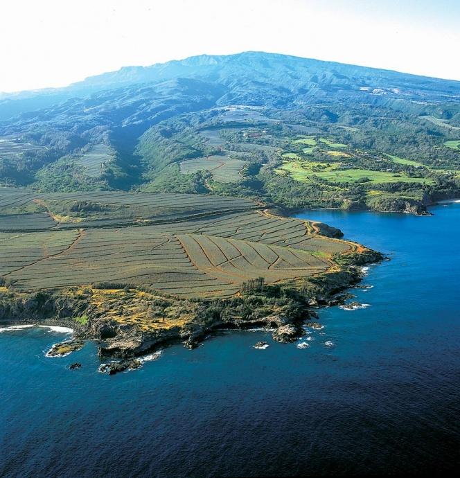 Aerial photograph of Līpoa Point, courtesy ML&P.