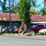 Hāna, Maui, fronting the Hasegawa General Store. File photo by Wendy Osher.