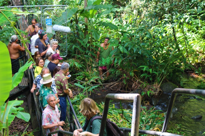 Hōkūlani Holt conducts an oli (chant) prior to the release of water above Kepaniwai. Photo by Wendy Osher.