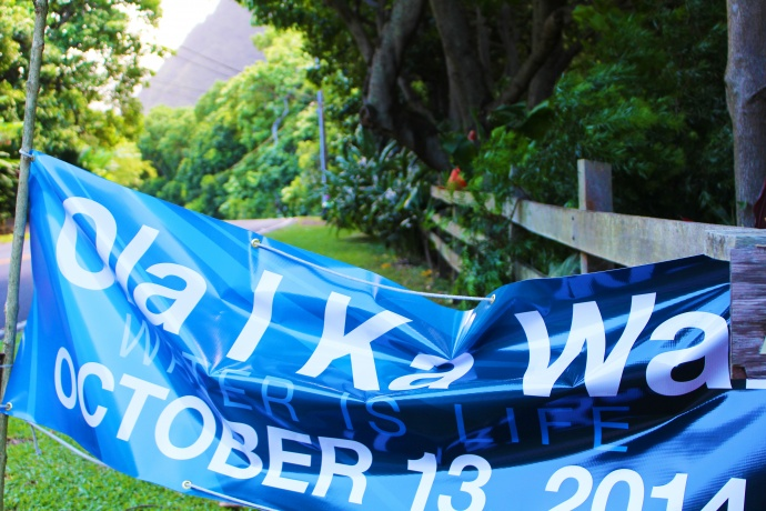 Ola I Ka Wai, Water is Life sign along ʻĪao Valley Road, marking today's water release. Photo by Wendy Osher.