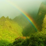 Maui rainbow, file photo by Wendy Osher.