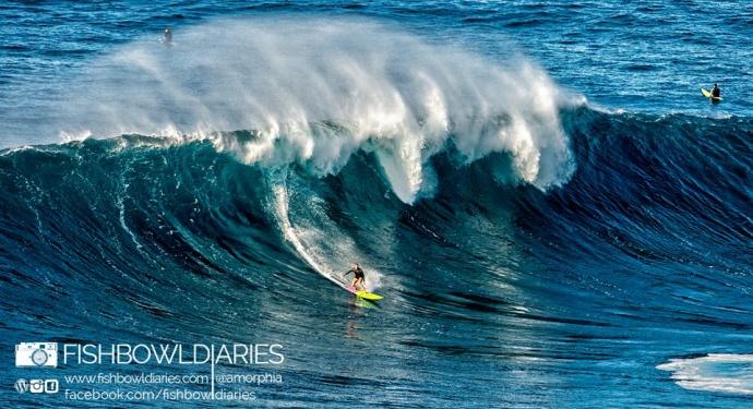 Paige Alms surfing Pe'ahi Jaws 11/11/14 - Image: Fish Bowl Diaries