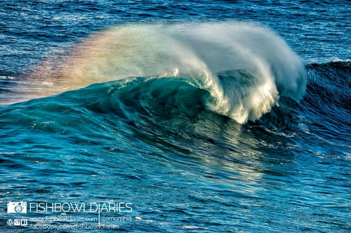 Pe'ahi Jaws 11/11/14 - Image: Fish Bowl Diaries