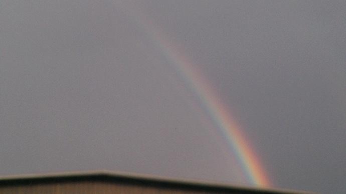 Maui Rainbow / Image: Cindy Cabera